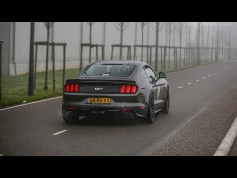 LOUD Ford Mustang GT w/ Guerrilla Exhaust - Start Up & Accelerations !