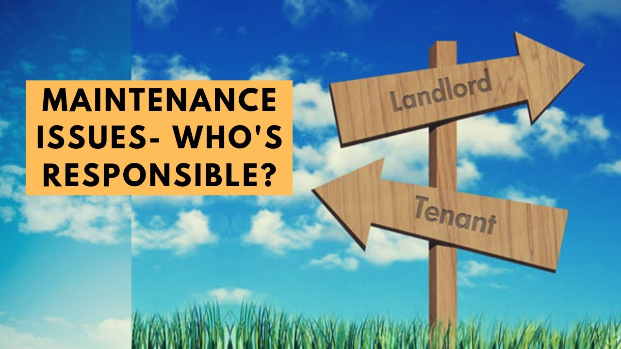 Maintenance issues- are they the responsibility of the landlord or the tenant