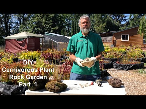 DIY Carnivorous Plant Rock Garden - Part 1