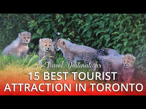15 TOP RATED - Best Tourist Attractions in Toronto Canada