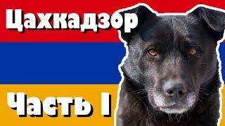 видео Видео армения горнолыжный курорт цахкадзор
