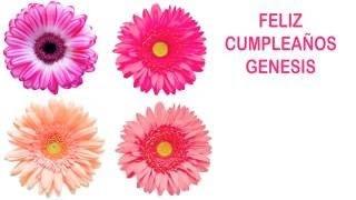 Genesis   Flowers & Flores - Happy Birthday