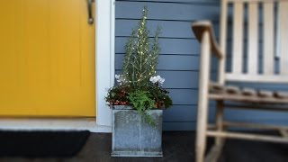 Quick and Easy Holiday Container Display