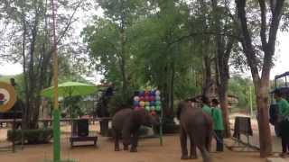 Отдых в Тайланде - Thailand Pattaya 2014(, 2014-04-30T22:14:39.000Z)