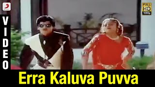 Yamaleela - Erra Kaluva Puvva Video (Telugu) | Ali, Indraja