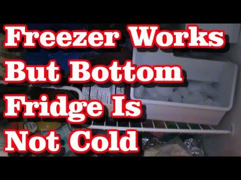 Refrigerator Repair (Fridge Is Not Cold)