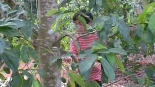 Trip to Vietnam (3/8): Lang Tre- Long Khanh