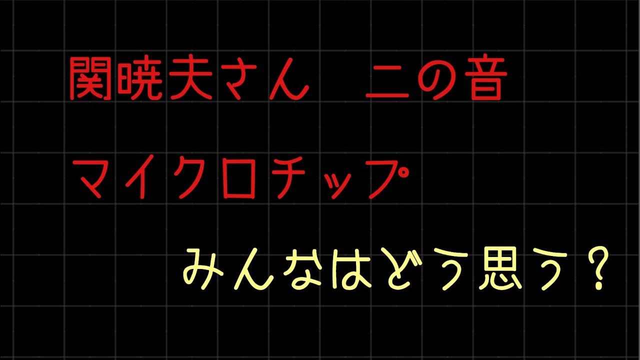 チップ 関 暁夫 マイクロ