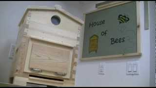 House Of Bees Warre Hive (plans Available)