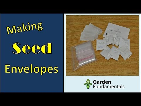 How to Make a Simple Paper Seed Envelope (packet)