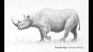 How to Draw a Realistic Rhino - Narrated