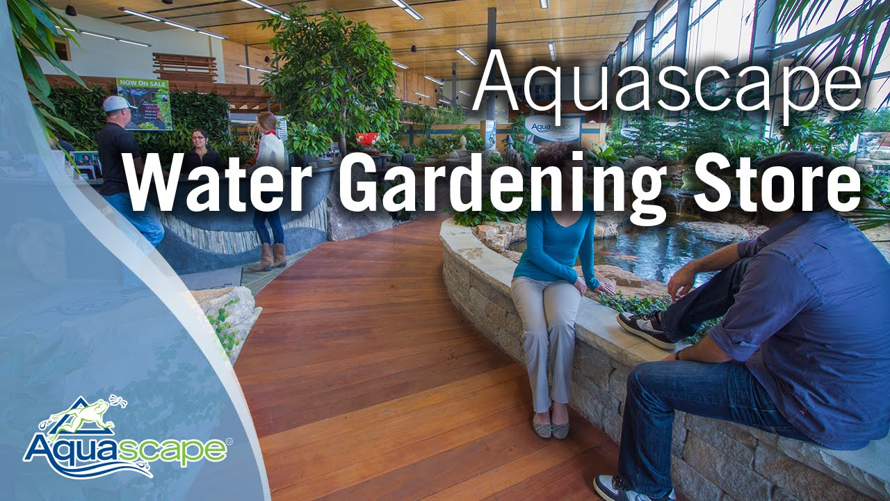 The New And Improved Aquascape Water Gardening Store Youtube