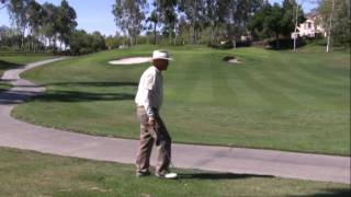Whole Brain Power Golfer Rolly White-Age 61