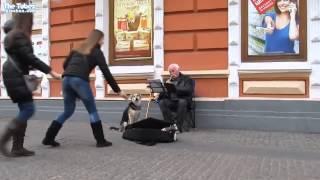 Бездомная собака подпевает уличному музыканту