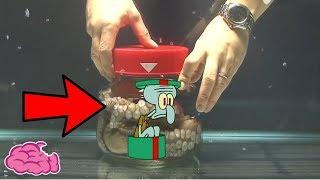 究竟被關起來的章魚哥會發生甚麼事? thumbnail
