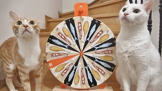 Cats Spinning The Wheel To Choose What To Eat !! (1M SUBS FEAST)