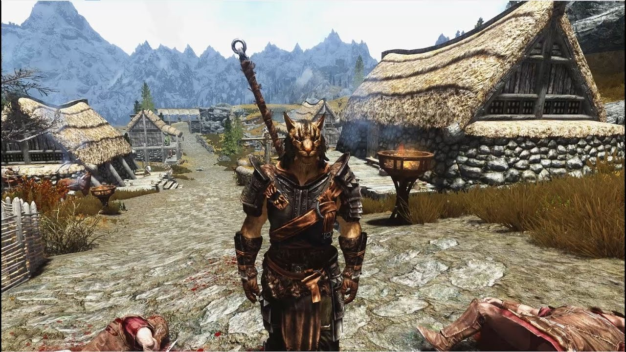 Best Skyrim Build Character Berserker