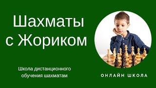 Шахматы с Жориком Школа обучения шахматам