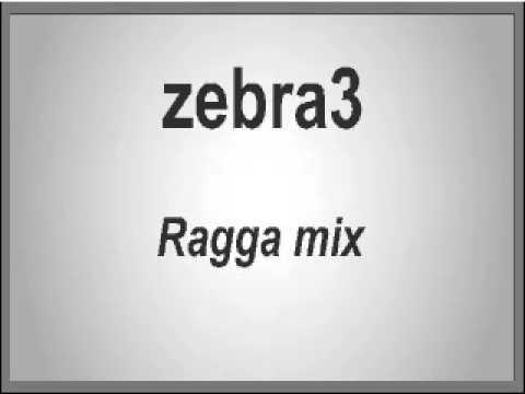 zebra3 - raggamix (I supposse it is mixed by Congo Natty)