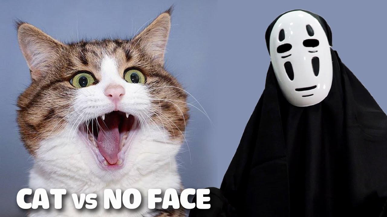 Cats vs No Face Prank | Funny Cat's Reaction To Kaonashi Ghost | Cat Scary Videos