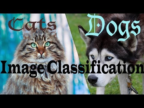 Cats V/S Dogs Classification