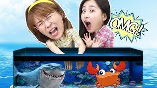 小伶推理之水箱裡面有什麼?觸覺挑戰海洋生物摸摸看!小伶玩具 | Xiaoling toys thumbnail
