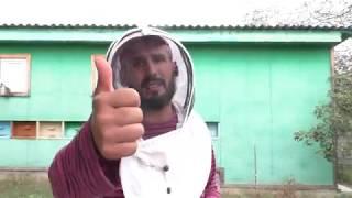 Как должны выглядеть пчелосемьи перед зимовкой 9.09.2019