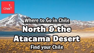 Where to Go in Chile: North & the Atacama Desert - Find your Chile