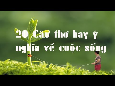 20 Câu thơ hay ý nghĩa về cuộc sống [Dành cho những ai đang buồn]