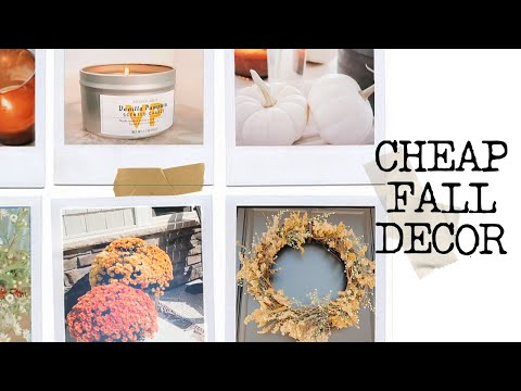 CHEAP FALL DECOR 2019 // Decor on a budget!