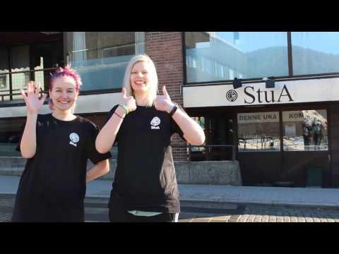 StuA-valget på Notodden