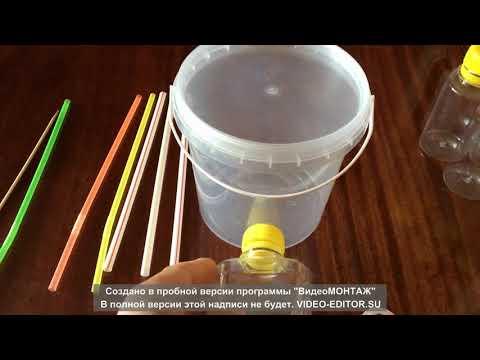 Вопрос: Как сделать муравьиную ферму в домашних условиях?