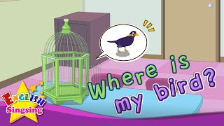 [Where] Where is my bird - Exciting song - Sing along