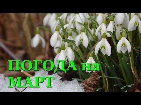 Синоптик рассказала, какой погоды ждать в марте