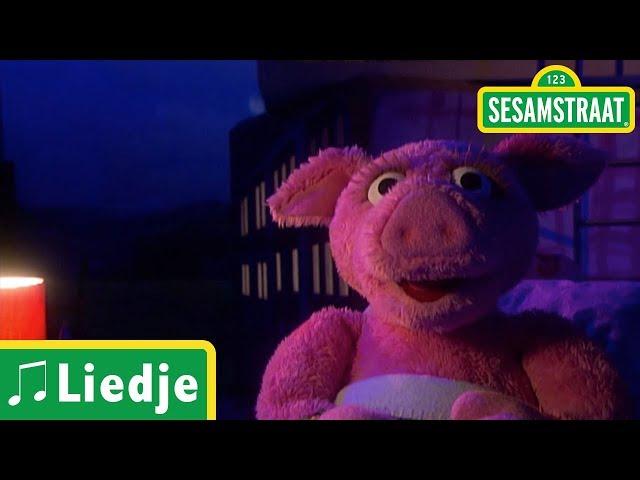 Slaapliedje Purk - Sesamstraat