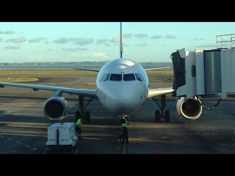 NZ424 | A320 | WLG-AKL | Air NZ | Trip-Report