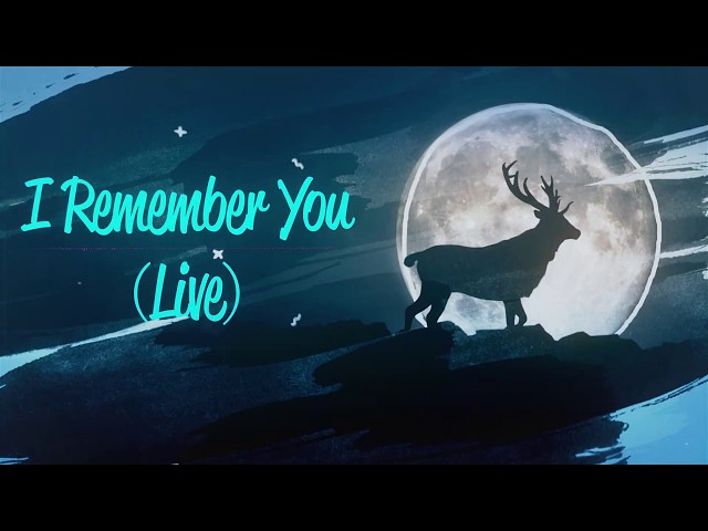 Adam Zwig - I Remember You (Live) (Official Lyric Music Video)