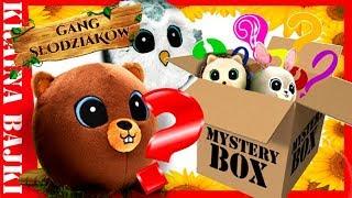 GANG SŁODZIAKÓW MYSTERY BOX! Tajemnicza paczka od KASI z ZIABAWY?
