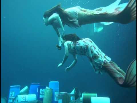 รักนี้หัวใจมีครีบ เบื้องหลังใต้น้ำ