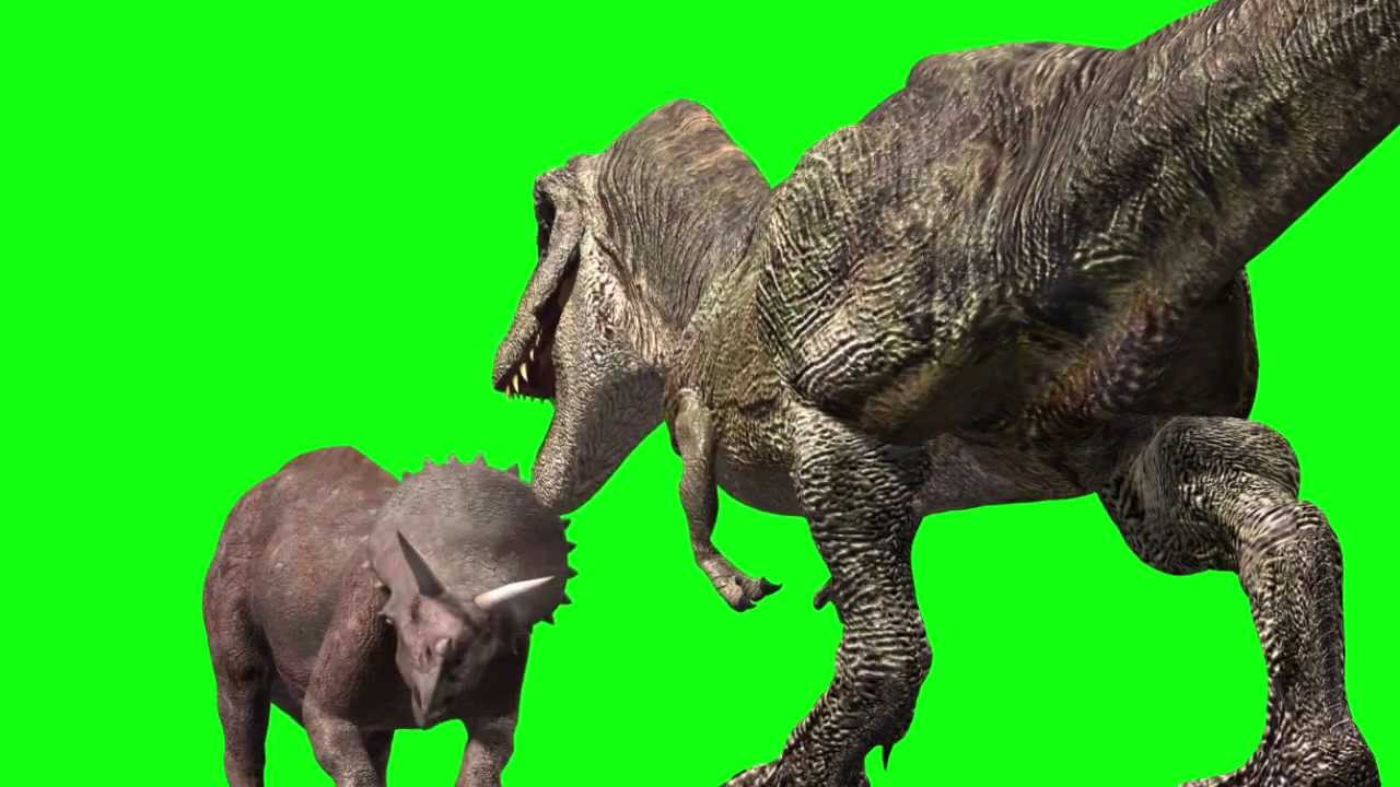 JURASSIC PARK T Rex Triceratops fight animation Royalty ... T Rex Vs Triceratops Fighting