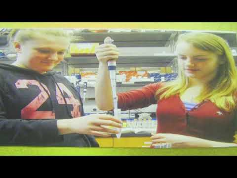 White Brook Middle School Science Fair Finalists 2012