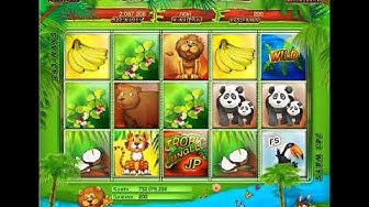 Tropic Jungle Casino for Heroes von Casoony