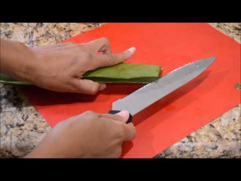 How to Cut an Aloe Vera Leaf and Make Aloe Gel