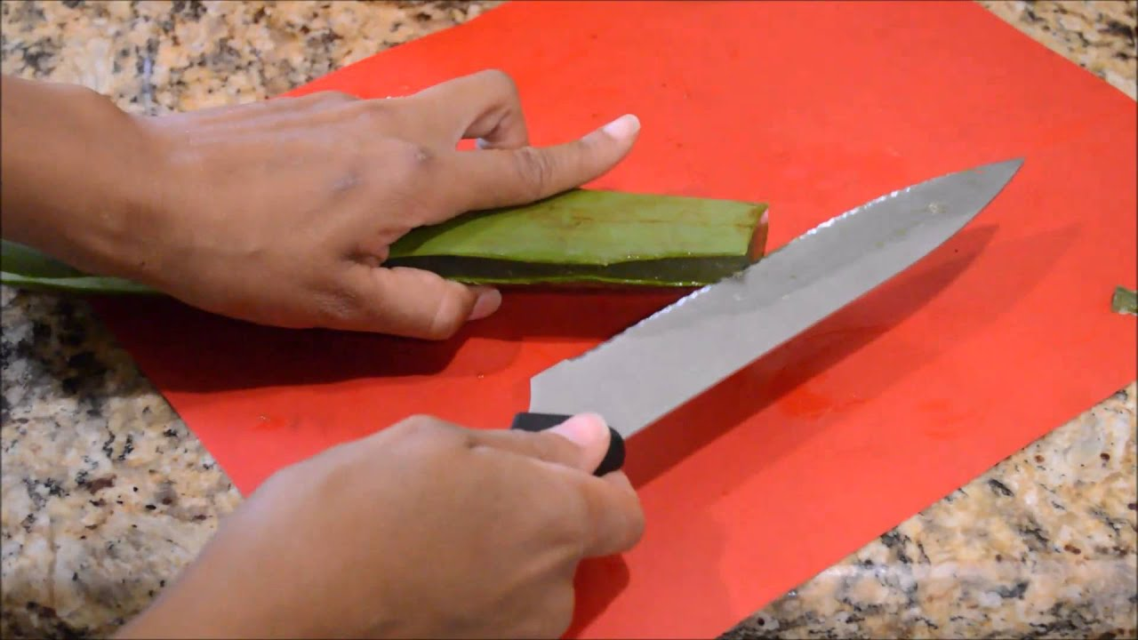 How To Cut An Aloe Vera Leaf And Make Aloe Gel Youtube