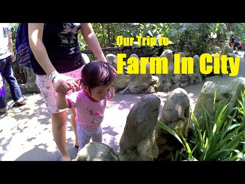Farm In City 2017 HD,  2year & 0month old