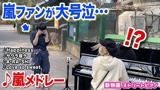 【感動】嵐ファンの飼育員さん号泣😭⁉️✨即興ピアノで『嵐神曲メドレー』をプレゼントしたら…【羽村動物園ストリートピアノ】A・RA・SHI/Happiness/サクラ咲ケ/Love so sweet