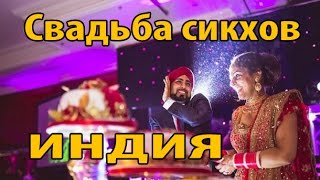 Свадьба Сикхов Штат Пенджаб Индия