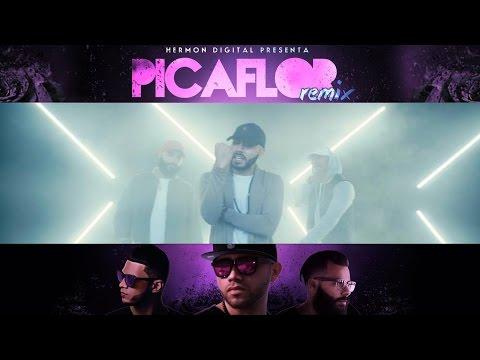 """Picaflor"" Remix Abdi  Ft. Indiomar & Jay Kalyl Video Oficial"