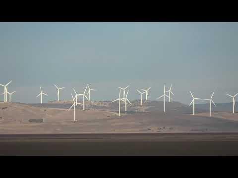 Capital Wind Farm