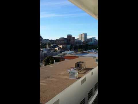 Bagpipes Halifax port
